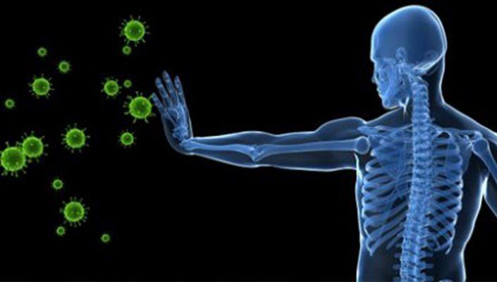 Organ Dapat Melawan Penyakit Autoimun Secara Aktif